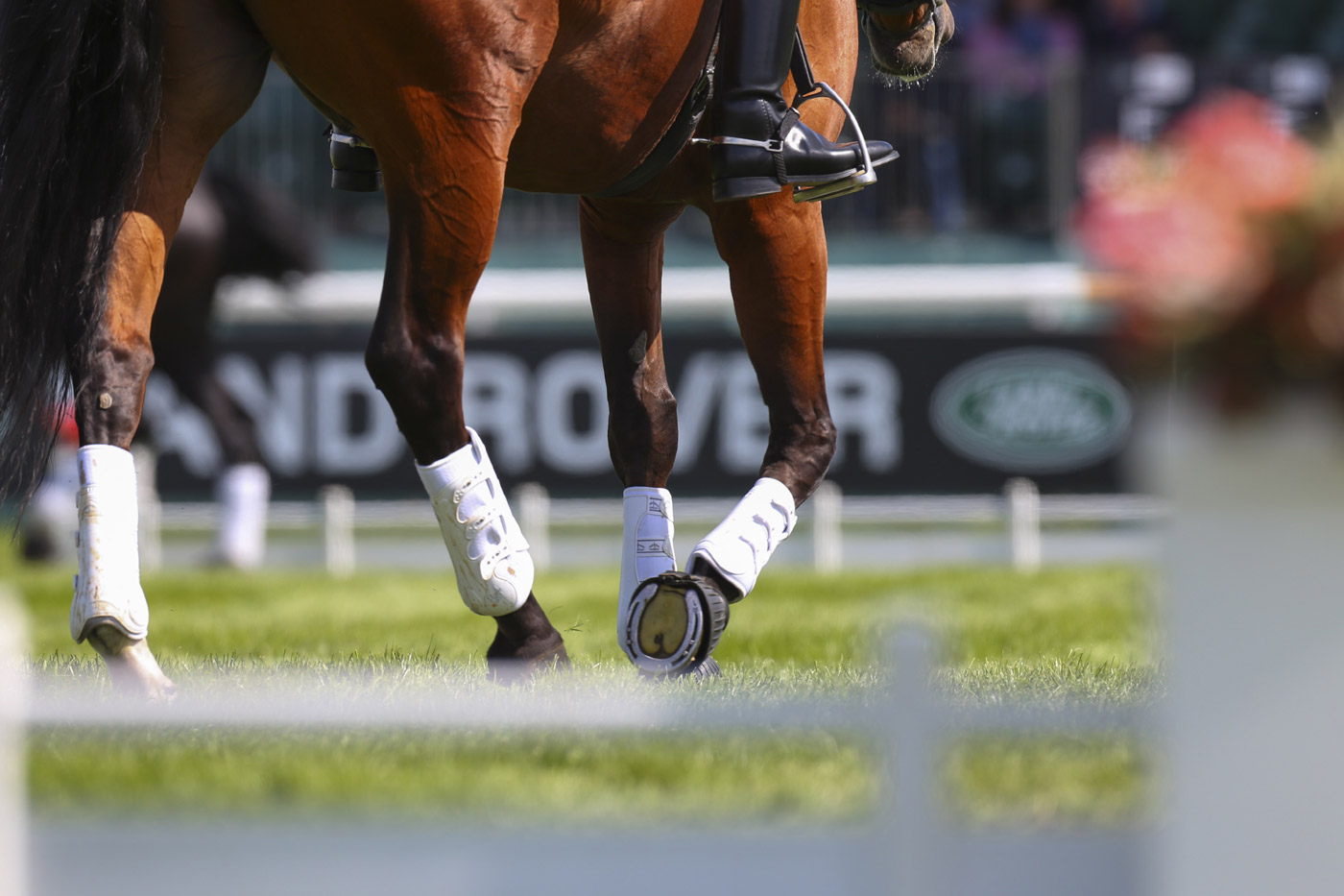 <p>Subtle branding at Land Rover Burghley Horse Trials.</p>