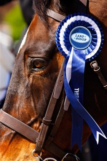 <p>Detail at the Royal Windsor Horse Show supported by Land Rover </p>